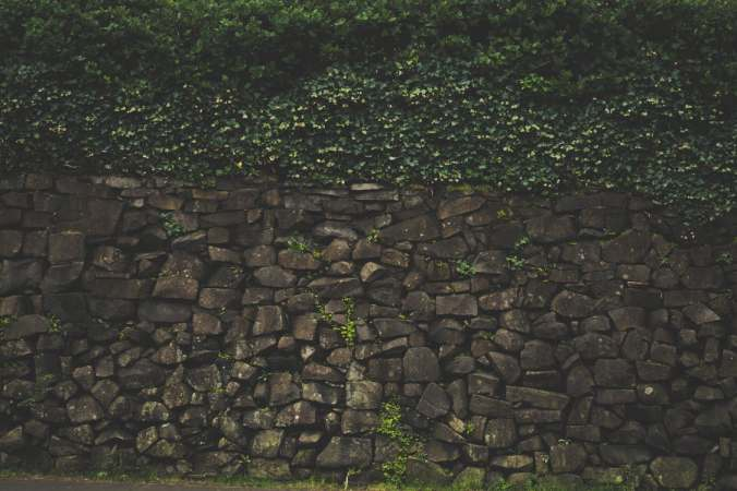 pexels-photo-214050